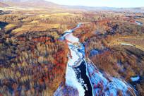 冰河穿越红树林