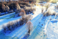 冰河丛林朝阳风景