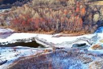 冰河红树林景观