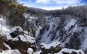 长白山雪谷全景岩石松树