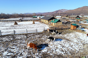 边塞村庄农家院雪景