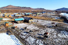 冬季边塞村庄农家院雪景