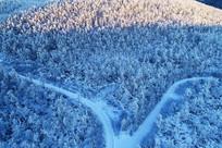 大兴安岭雪色森林中的雪路