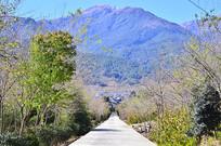 高山公路风景