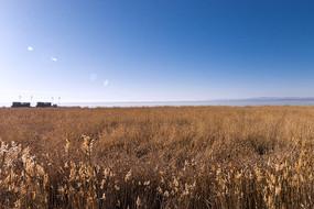 可鲁克湖风光