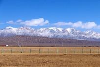 冬季草原风光