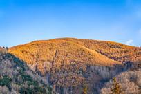 秋季蓝天下的金色山脉