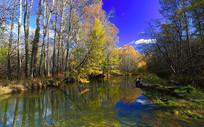 森林河彩林秋色