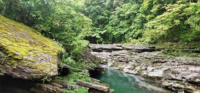 森林岩石河流