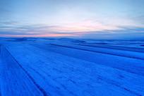 雪域农田防护林雪景暮色
