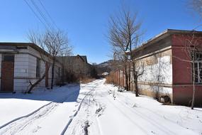冬季雪地农村乡间小道