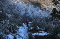 冬天的彭州铁瓦殿山路雪景