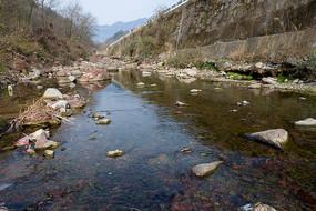 重庆巫山楚阳河溪水