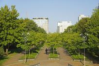 韩国水原公园的户外健身道