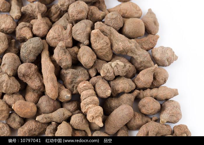 食药同源的中药蕨麻图片