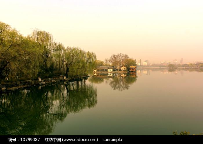 初春大明湖的早晨图片