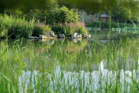濟南森林公園
