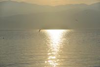 波光粼粼的西昌邛海