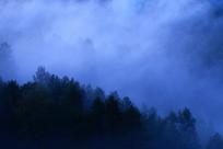 大兴安岭树林晨雾迷漫