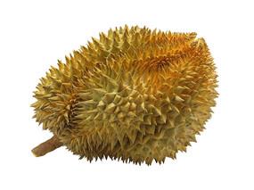 水果之王榴莲抠图白底图片