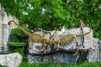 一对完整恐龙化石骨造型