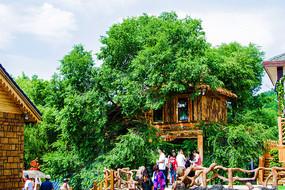 本溪小市一庄木屋与树木