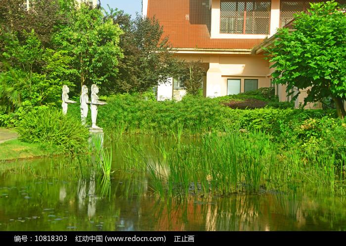 城市花园喷泉水景园林景观 图片