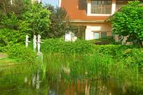 城市花园喷泉水景园林景观