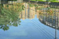 喷泉池塘的城市建筑倒影