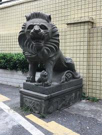 门口石狮子图片