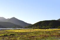 莫干山风景