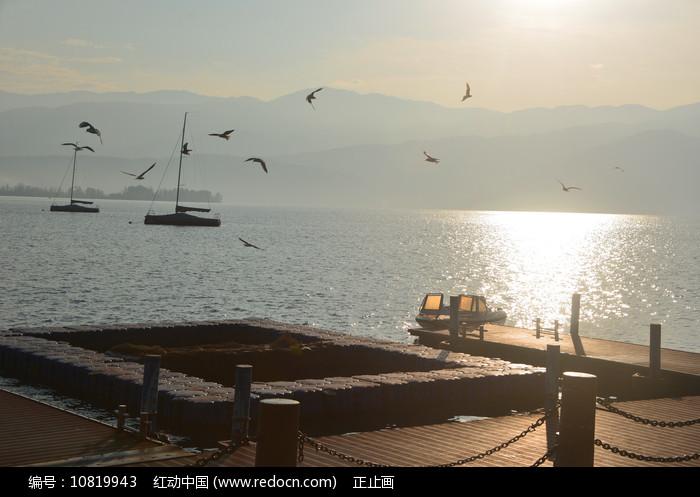 西昌邛海码头日出和飞翔的海鸥 图片