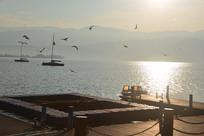 西昌邛海码头日出和飞翔的海鸥