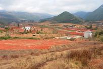 云南农村田野风光-田园红土地