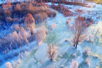 大兴安岭冰河树林雪景
