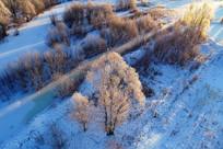 大兴安岭雪原树林晨光