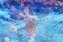 航拍冰河红树林