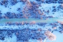 航拍雪域冰河树林晨光