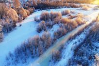 雪域冰河树林朝阳