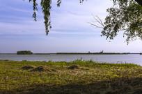 大纵湖风光