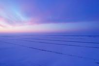 航拍农田防护林雪野暮色