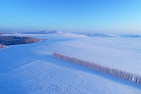 航拍雪原农田防护林