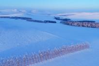 呼伦贝尔冬季雪原田野