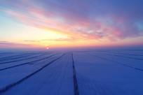 内蒙古雪域农田防护林日落