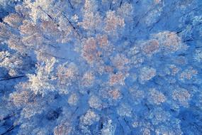 大兴安岭冬季森林雪景