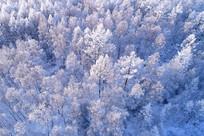 大兴安岭冬季雪林