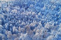大兴安岭冬季雪域雾凇(航拍)