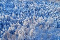 航拍大兴安岭树林雾凇