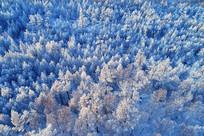 航拍雪域山林风景