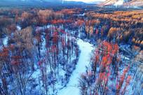 冰封河流红柳树林雪景